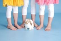 Bunny Photos_11