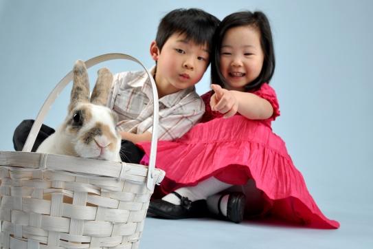 Bunny_1 (1)