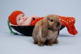 Bunny_1 (8)